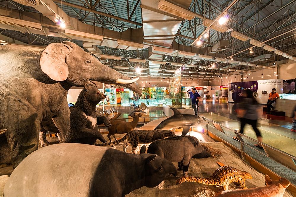 พิพิธภัณฑ์ธรรมชาติวิทยา-อพวช.-สัตว์